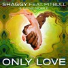 Shaggy feat. Pitbull & Gene Noble - Only Love (Bad Royale Remix)