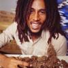 Bob Marley & Skip Marley- Three Little Birds ft Cedella Marley (Ricky Mears Remix)