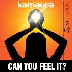 Can You Feel It (Radio Edit)