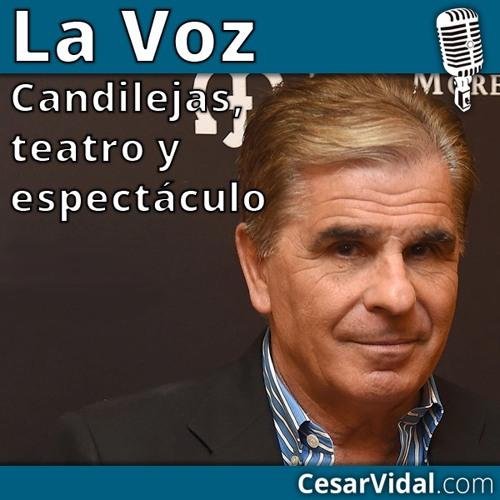 Entrevista a Pedro Ruiz - 22/01/2016