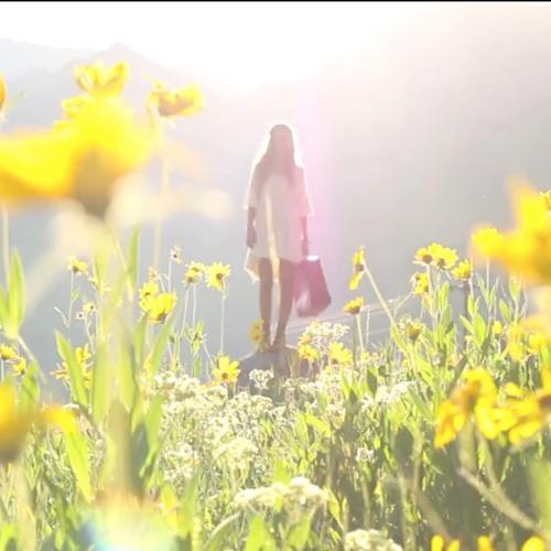 Sunshine by Alumo Royalty Free Music | Free Listening on