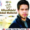 AdhamNabulsi - 3abali Wadda3ak  - 2016 HQ ادهم نابلسي - عبالي ودعك