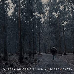 אליעד - רוחות / Eliad - Spirits (DJ Tzealon Official Remix) mp3