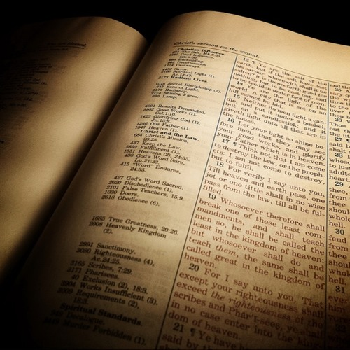 What to Expect from the Bible
