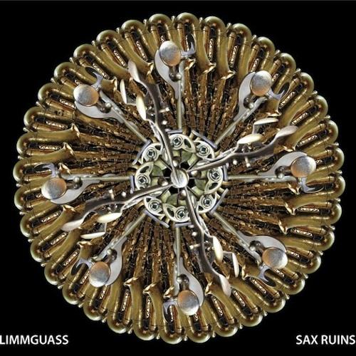 "SAX RUINS 2nd album ""Blimmguass"" Digest"