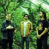 Herbal Remedy - Chronicles Dub Trio
