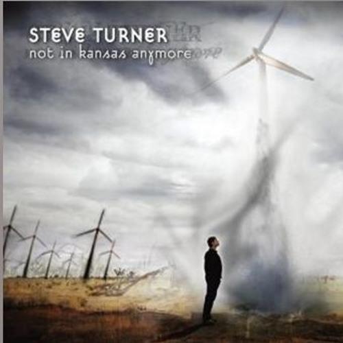 Steve Turner - Finding Holes in Rainbows