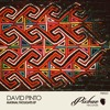 David Pinto - Jim's Vision (Original Mix) PIXBAE RECORDS
