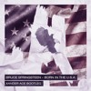 Born in the U.S.A (Xander Ace Bootleg)[FREE DOWNLOAD]