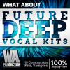 Future Deep Vocal Kits [10 Construction Kits, 250+ Drum / Bass Samples & Loops]