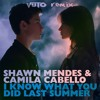 Shawn Mendes & Camila Cabello - I Know What You Did Last Summer (Vuto Instrumental Remix)