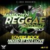 Jamdown Reggae Riddimz Vol 3 {Lovers Rock} By Dj E Love [2016]