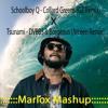Schoolboy Q - Collard Greens (GZ Remix) X Tsunami - DVBBS Borgeous (Arceen Remix) [Marlox Mashup]