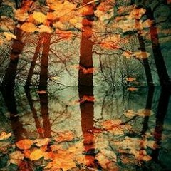 Brian Crain - Leaves On The Water
