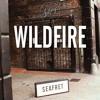 Seafret - Wildfire (Autograf Remix)