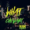 ILISH - What Chu Want ft. WxNDER y