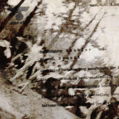Avsnitt 11 - Förintelsen, del 1