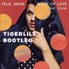 Book Of Love - Felix Jaehn(Tigerlily Bootleg)