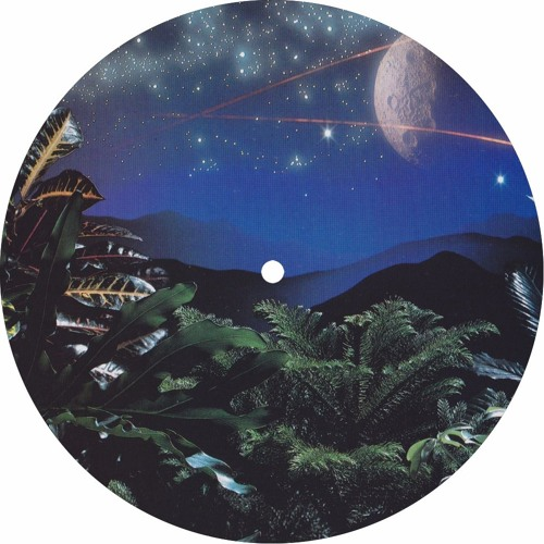 PREMIERE : Cerrone - Funk Makossa (LeonxLeon Remix)