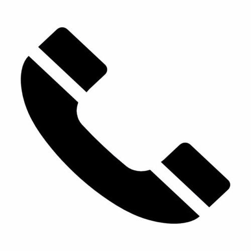 ENTREVISTA VIA TELEFONICA A EL PROFESOR ALEJANDRO GUITIERREZ
