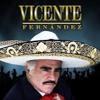 Exitos De Vicente Fernandez Portada del disco