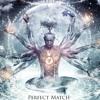 Sajanka - Perfect Match