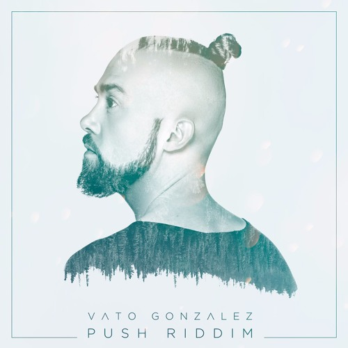 Vato Gonzalez - Push Riddim (Original Mix)