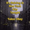 It's Raining In New York City Tonight By Tukso Okey