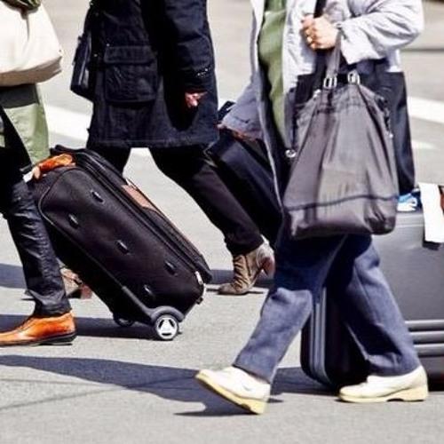 Тема программы: миграция населения