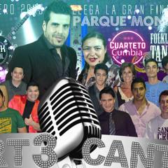 Radio art3 final - EL ULTIMO PROGRAMA -  De la 2°temporada 2015