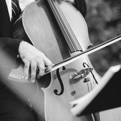 Pop String Quartet: Blackbird (The Beatles)