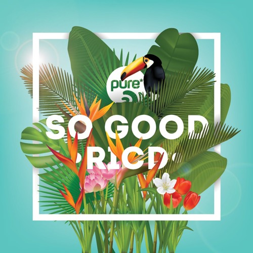 RICD - SO GOOD • pure* records 023