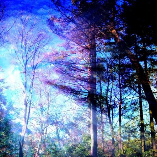 Brief Glimpses of Light