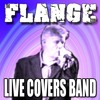 Wedding Band Leicestershire Music Past & Present Rock - Pop - Indie