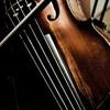 D'Lima Produção Musical - Photograph - Ed Sheeran - Violin Cover - Violin Live