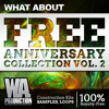 FREE Anniversary Collection Vol. 2 [5.3GB of the Best EDM/ Future/ Deep Construction Kits & Samples]