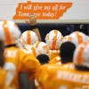 16 Rocky Top - Tennessee Volunteers (Live)