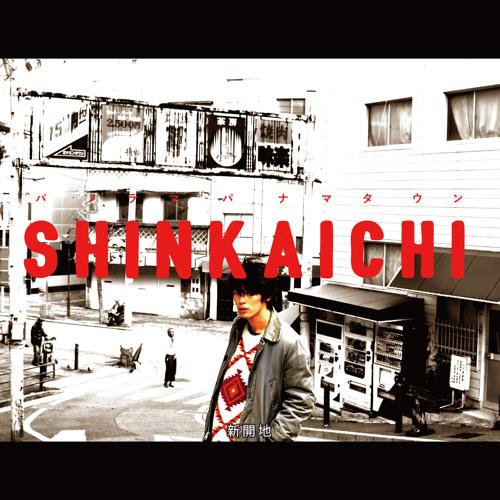 パノラマパナマタウン 『SHINKAICHI』