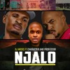 Dj Micks Ft Character And Professor - Njalo