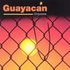 Orquesta Guayacan - Cada Dia Que Pasa ( Dj Uzzy 96 Bpm )