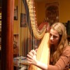 Sam Smith - Writting's On The Wall (Harp Cover)