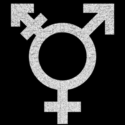 Stanford J-school: Transgender Voice Therapy