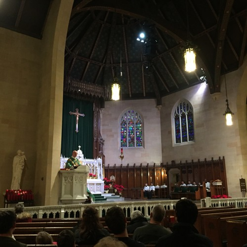 2016 - 01 - 31 Homily of Fr. Perrone (Noon, OF; 4th Sunday of OT)