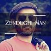 043 - Zendeghi Man  -  Shahin Najafi
