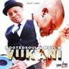 RootedSoul & Movi M - Vukani (Radio Edit)