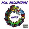 Mic Mountain - 321 Murda Lyrics