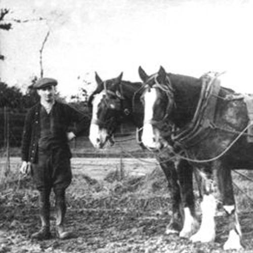 Alice Wharton on rural Kirkby life