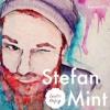 Lauter Unfug Podcast #17 Stefan Mint
