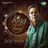 Download Main Nashe Mein Hoon by Jagjit singh Mp3