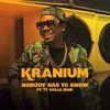 Kranium (ft Ty Dolla $ign)- Nobody Has To Know (Instrumental)